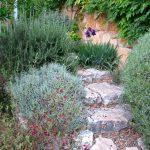 גינה קטנה מדרגות אבן