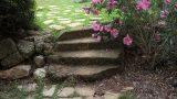מדרגות-מסותות-באבן-כורכר