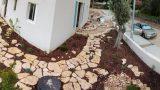 שביל-אבן-בגינה-לאחר-שתילה