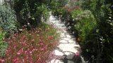 שביל-בגינה