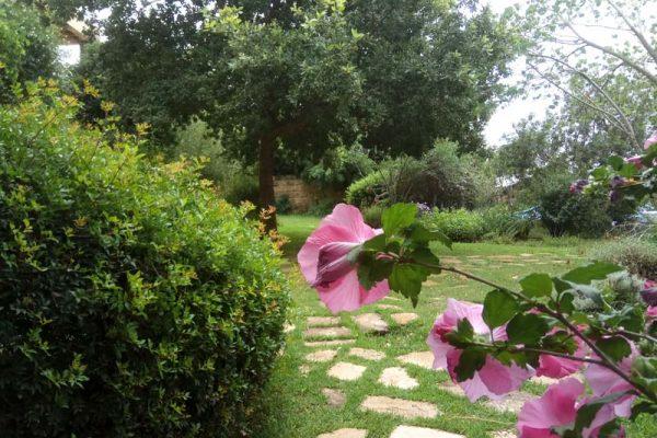 תמונות גן במושב עופר – משק הר הפרחים